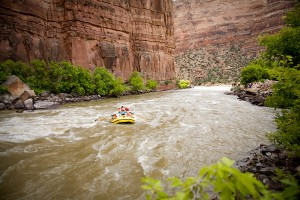 Yampa_River_Rafting