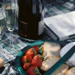 picnic evening